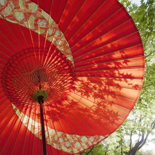 金沢和傘-HP